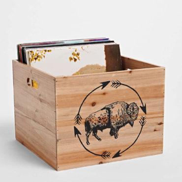 Buffalo Storage